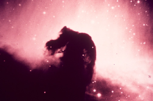 horse head astronomy - photo #27